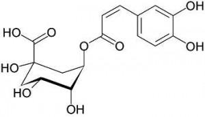 kwas chlorogenowy budowa